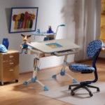 Столы в дом для школьника, обзор моделей