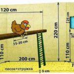 Как построить птичник на 10-20 кур своими руками