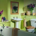 Салатовая ванная комната (45 фото): гармония и уют