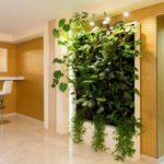 Оформление интерьера растениями: 70 фото-примеров