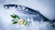 9 советов по выбору рыбы